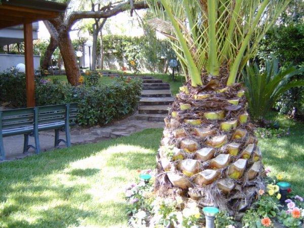 Lavori giardinaggio favilla